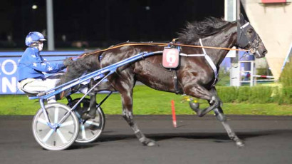 11/24/20 - VINCENNES - Prix Fortuna: Results and Reports
